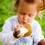 Памятка для родителей «Внимание! Грибы!»