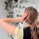 Опасное воздействие плесени и грибка на ребенка.