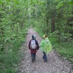 Как ребенку не заблудиться в лесу?
